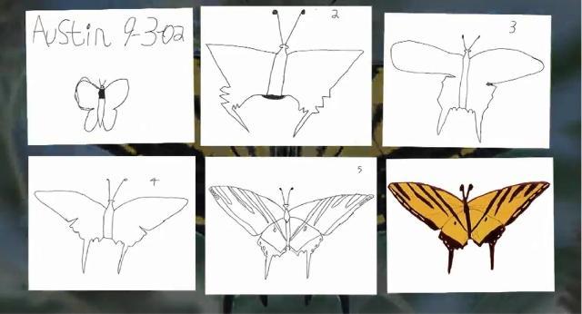 Austins-Butterfly.jpg